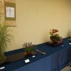 秋の草もの盆栽の展示会が始まりました。