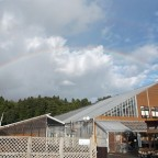 今日、フラワーランド上空に虹がくっきり!!