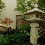 明日21日(金)から秋のガーデンショーを開催します!