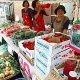 ランドの「夏野菜まつり」 大人気!朝どりいちご!(昨年の様子)